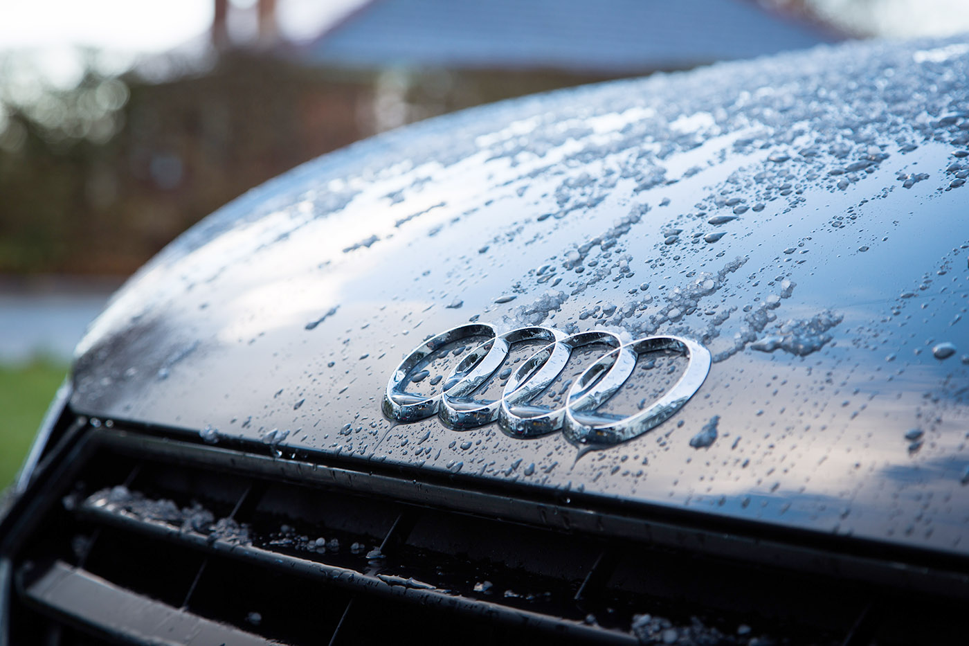 Audi badge on a silver car