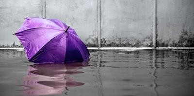 purple umbrella floating in floodwater