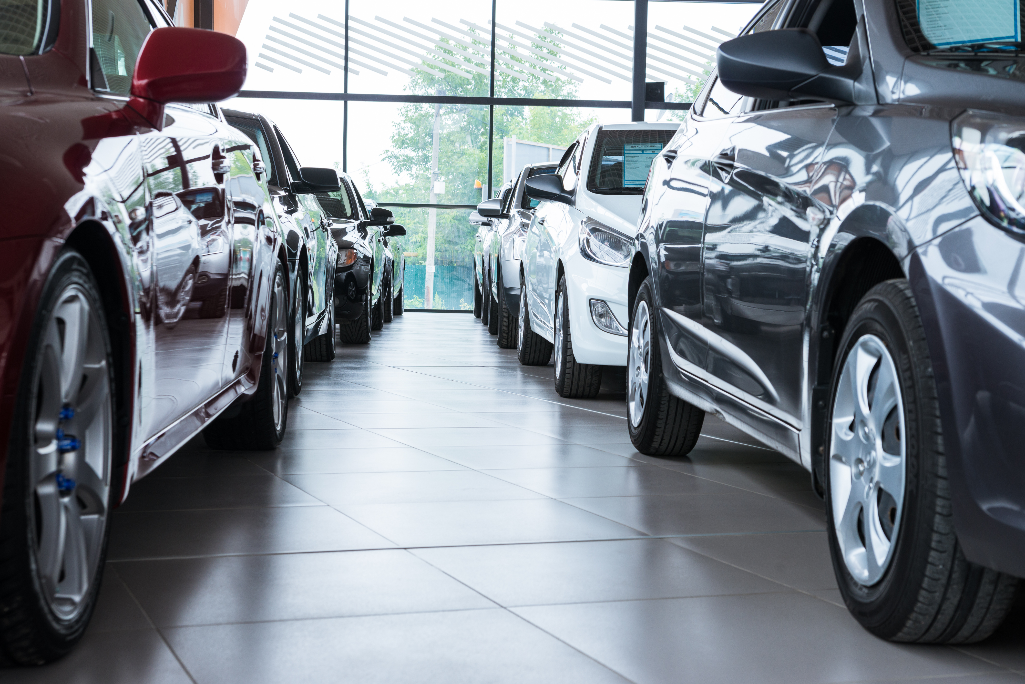 Cars lined up in a showroom