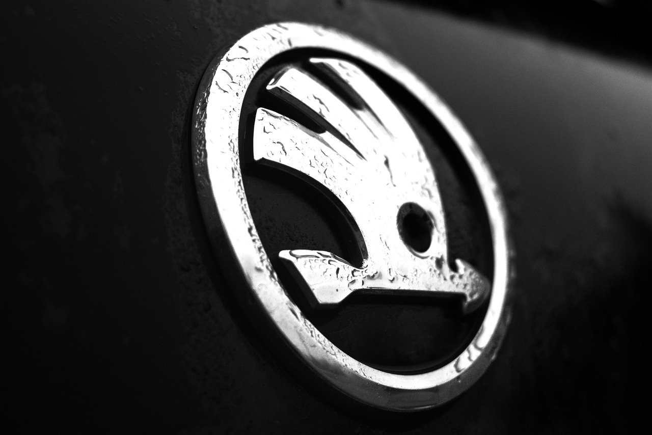 Skoda Fabia car badge