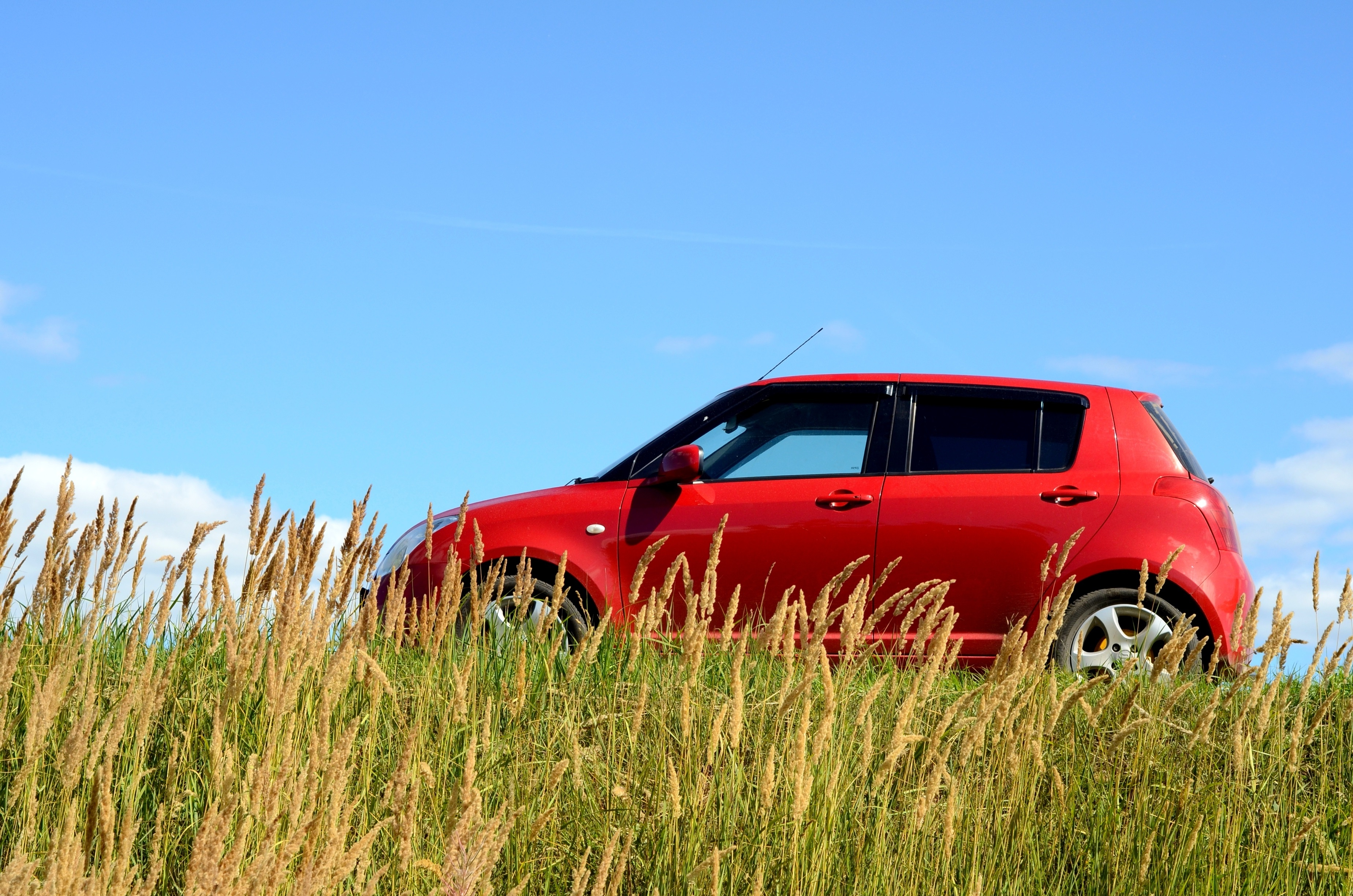 Red Suzuki Swift in field