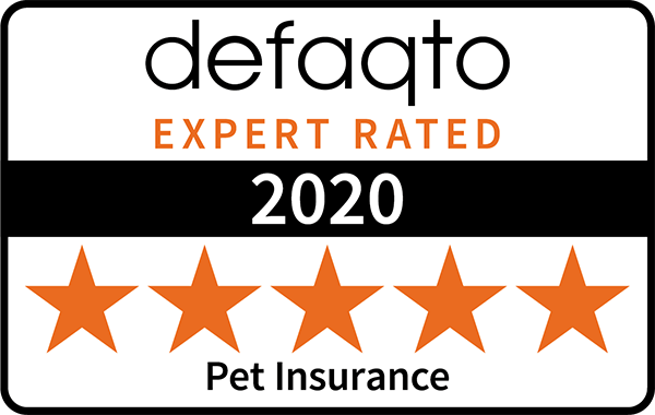 Defaqto 4 star rating pet insurance