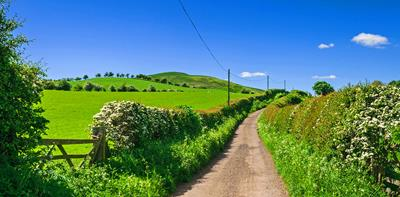 Narrow, country road