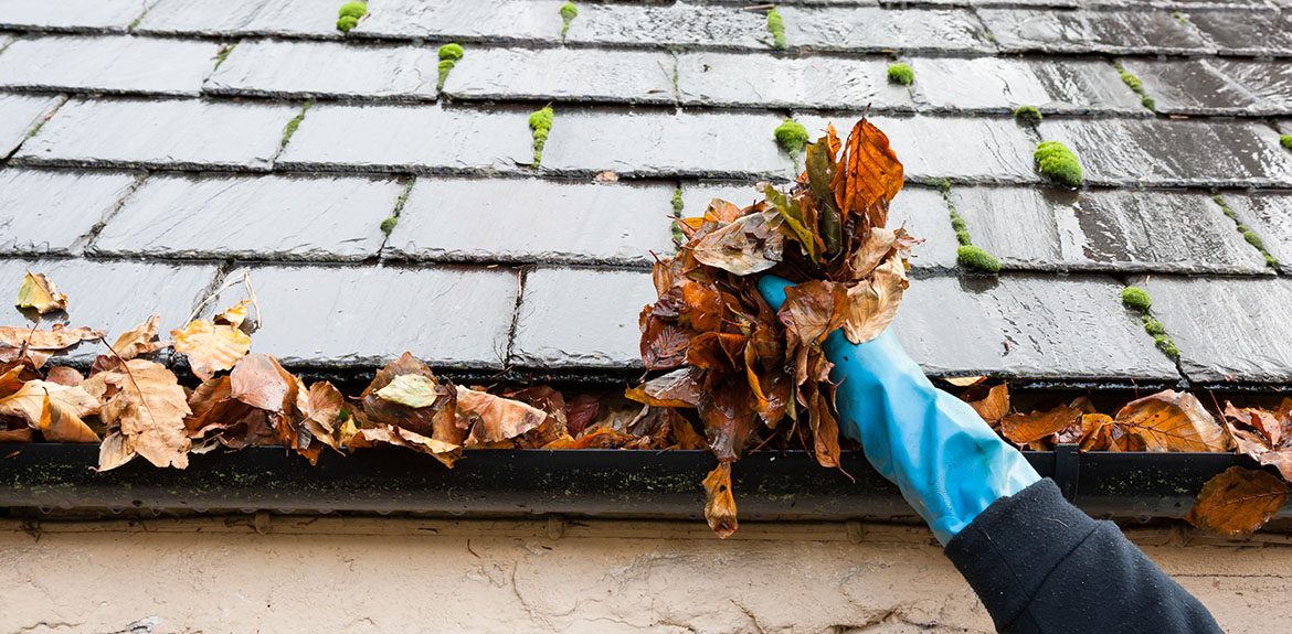 cleaning out roof gutter